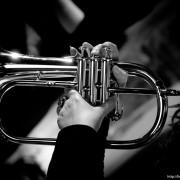 house_concerts_tromba_e_voce_50